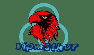 vipmathur.com-vipmathur-sonumathur-sonu mathur-my blog